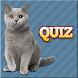 Cats Quiz by Krzysztof Osiak