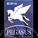 PEGASUS IBMS by Pegasus Automation International