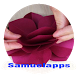 paper flower making by Samuelapps