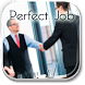 How To Get The Perfect Job by noel barton