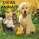 DICAS ANIMAIS by APP NATAL