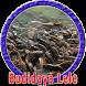 Budidaya Ikan Lele Kolam Terpal by Goodapps Project