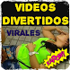 Funny viral videos