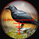 Forest Crow Hunter 3D - Sniper Shooting Simulation by JV GAME STUDIO