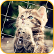 Cute Cats Jigsaw Puzzles by Puzzle Game Fun