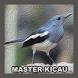 Offline Chirping Master by Wabdee Studio