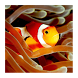 Guía de peces de acuarios by Geovanny Fallas