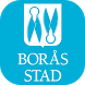 Synpunkter & fel Borås Stad by Infracontrol