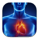 Анатомия Человека by StartHeartApps