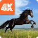 Horses Wallpapers 4K by LIVE APPS