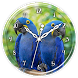 Hyacinth Macaw Clock Live WP by Ripple Clocks