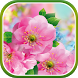 Spring Flower Live Wallpaper by Live Wallpapers 3D