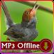 Suara Burung Prenjak untuk Masteran Offline by kicaumania suara burung