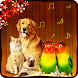 Animal + Bird Sound Effects by Fundoo apps centre