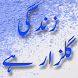 Zindgi Gulzar Hai by ExcellApps