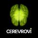 CEREVROVI AR-Augmented Reality by CEREVROVI