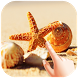 SeaShells Water Ripple Live Wallpaper by Krystal World