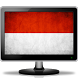 Indonesia TV Channels Stream by Live Sports TV Channels HD Streaming