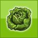 frisches Gemüse vom Bauernhof by Wenpas Informatik