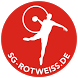 SG Rot-Weiss Babenhausen by Andreas Gigli