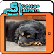 Slideshow Lullabies: Animals by Sweet Universe