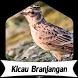 Suara Burung Branjangan +1000 Kicau by Terkicaulah