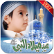 Eid Milad-un-Nabi Rabi ul Awal Photo Frames by meritapps free photo frames