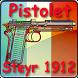 Pistolet Steyr 1912 expliqué by Gerard Henrotin - HLebooks.com