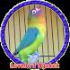Kicau Lovebird Gacor MP3