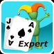 Blackjack Expert by DeepNet Technologies Inc.