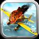 Airplane Crisis