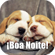 Imagens Frases de Boa Noite by Leprechaun Apps