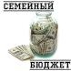 Семейный бюджет by vivakniga