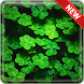 Shamrock Wallpapers by Modux Apps