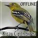 Suara Burung Sirtu Gacor by Smanxar Studio