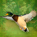 Duck Hunter VR by Sideline Amusement