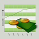 Income Log by Aspiring Investments Corp
