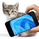 Simulator X-Ray Cat Joke by Joke Apps And Games