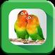 Bird Calls, Sounds & Ringtones by Tone Apps