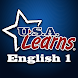USA Learns English 1 by SCOE