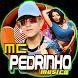 Mc Pedrinho : Bailarina Funk Música Canção by Musica Para MC Player
