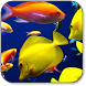 Fish Wallpapers by Yogiapps