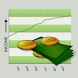Income Tracker by Aspiring Investments Corp