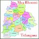 Telangana Adangal Pahani 31 districts