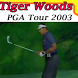 Guide for Tiger Woods PGA Tour by putra6