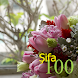 100 Şifa by KenMac Holdings Limited