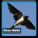 Kicau Suara Burung Walet by kangdeveloperstudio