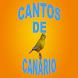 Cantos de Canário by Lara dantas araujo
