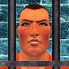 Prison Break Survival Mission by Play Vertex