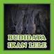 Budidaya Ikan Lele by JebagGodev